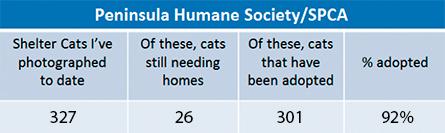 PHS&SPCA